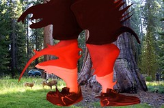 Mutant Monte My Deer Old Redwood Trees 8 7 2017 (Monte Mendoza) Tags: montemendoza mutant mutation giant deer redwood