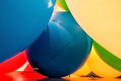 inside view (Kai-Ming :-))) Tags: artinstallation balloon kaiming kmwhk hongkongartexhibition onceinabluemoon jccac 72inchballoo nrubberballoon jockeyclubcreativeartscentre colorful installation art reflection blackcloth blue yellow green red