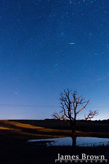 Perseid meteor (2017) (J. Brown Photography) Tags: james brown photography sony alpha a77 sigma perseid meteor 2017 shooting star tree astrophotography
