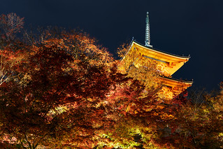 三重の塔 - 清水寺 / Kiyomizu-dera Temple