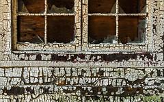 Gramma's House (Junkstock) Tags: aged abandoned agedwindow buildings building craquelure decay distressed decayed exterior house nostalgic nostalgia old oldstuff oldandbeautiful paint patina peelingpaint rustic ruralexploration rural textures texture weathered window windows washington white wood