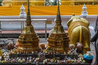 doi tung - thailande 57