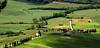 La Toscana / Tuscany (López Pablo) Tags: tuscany landscape green tree road italy nikon d90