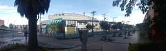 Panorámicas (josespektrumphotography) Tags: panoramica instantanea suba enlamañana calle casas arbol color josespektrumphotography josespektrum bogota colombia