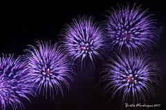 D60_6379-76-1024 (Joëlle-Rodrigue-Photos) Tags: feu dartifice firework fête du lac annecy night dannecy