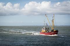 Urlaub IJsselmeer - Lauwersoog-4