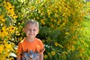 a bright, sunny day (l i v e l t r a) Tags: nikkor 35mmf14g f14 d610 sunny bright squint sunshine flowers yellow bokeh