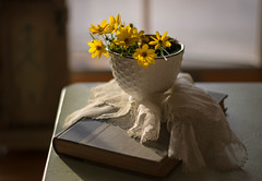Summer Is Fading (Captured Heart) Tags: flowers yellowflowers sunshine coreopsis floralarrangement