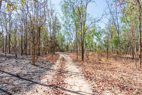 mae wang national park - thailande 1
