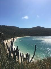 (Carol Melo_) Tags: brazil sea sun blue cactus beach beautiful arraialdocabo arraial riodejaneiro iphone praiadoforno