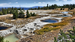 20160911_132713_1 (pleroma_4_all) Tags: yellowstone yellowstonenationalpark oldfaithful nature zen beauty naturebeauty landscapes nationalparks usa wyoming wolves bears bison buffalo foxes mountains hiking outdoors grandteton tetons geysers grandprismatic springs
