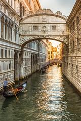In the water streets of Venice (Frank Lammel) Tags: 2015 adria gondola italien italy seufzerbrücke sunset venedig veneto venice water watertaxi bridgeofsighs pontedeisospiri whitebuilding