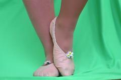 Piškoty a sedmikrásky (024) (Merman cvičky) Tags: balletslippers ballettschläppchen ballet slipper ballerinas slippers schläppchen piškoty cvičky ballettschuhe ballettschuh punčocháče pantyhose strumpfhosen strumpfhose tights collants medias collant socks nylons socken nylon spandex elastan lycra