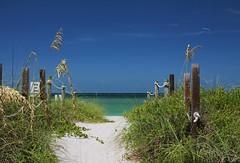 Timeless Scandal (Michiale Schneider) Tags: beach path sand gulfofmexico captivaisland florida landscape nature michialeschneiderphotography blue green