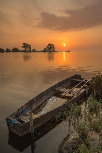Eka i soluppgången