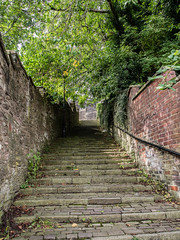 Some of the 108 steps (wi-fli) Tags: macclesfield england unitedkingdom cheshire cobbles steps path hill hilly old