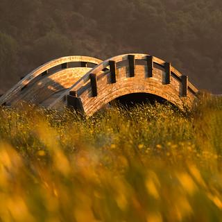 Golden Bridge in the Setting Sun