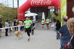 "Llegada de la carrera - 5ª Can-rrera Popular de Valencia • <a style=""font-size:0.8em;"" href=""http://www.flickr.com/photos/145784091@N07/36717645874/"" target=""_blank"">View on Flickr</a>"