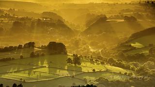 Derwent Valley (bathed in gold)
