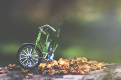 transported (rockinmonique) Tags: bicycle mini toy 52in52 nature macro bokeh green gold outdoor moniquew canon canont6s tamron copyright2017moniquew