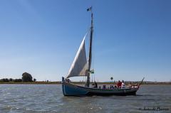 Tagus river traditional old sailing boat (JOAO DE BARROS) Tags: portugal tagus sailing boat nautical maritime joão barros tejo