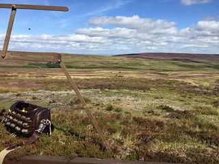 Scotland Bird Hunting 8