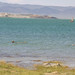 The Salinity of Mono Lake