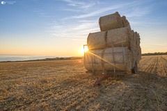 Harvest time (technodean2000) Tags: ogmore south wales uk hay bales trailer sun flare sunset field sea coast nikon d610 lightroom