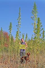 Markab & Lola (Markab Mattossi) Tags: canapa cannabis weed canapainfopoint natura marijuana hemp hempitaly