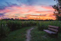 Swirley Sunset (Lauren Delgado) Tags: swirly clouds springfield bog metropark summit metroparks ohio wildflowers field flowers canon t2i landscape photography dslr nature sunset bench park colors