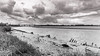 River Mersey (Graeme Randles) Tags: runcorn widnes mersey crossing beach sand wide samyang blue hour northwest bridge black white