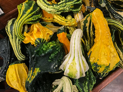 IMG_0251 (ccrzone) Tags: ccrphotography ccrzone ccr ccrpicture fresh fruit photography photooftheday photograph picture picoftheday life livelife lovelife loveit lens traveling travel trip travelphoto travelpicture travelphotography travelling gourds ornamental