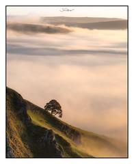 Hope Valley (shaunyoung365) Tags: landscape peakdistrict sunrise mist fujixt2