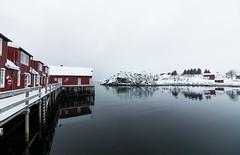 IMG_2529 (alessandro orfanù) Tags: norway lofoten vesteralen hurtigruten winter snow northernlight