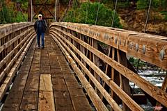 Stroll On A Damp Fall Day (MBates Foto) Tags: availablelight bridge color daylight daytime existinglight fall man nikkorlense nikon nikond810 outdoors pacificnorthwest park statepark urban spokane washington unitedstates 99205
