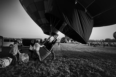 Come Fly With Me (Marcela McGreal) Tags: newyork glensfalls queensbury adirondackballoonfestival 2017 balloon festival adirondacks blackandwhite blackwhite bw blancoynegro blanconegro bn byn blanco negro black white noiretblanc noirblanc noir blanc biancoenero bianco nero bianconero pretobranco pretoebranco preto branco schwarzundweis schwarz weis nikond3300 nikon globo hotairballoon