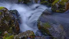 """El viaje del agua - Un rincón en el bosque (ANDROS images) Tags: andros images photos fotos fotoandros """"androsphoto"""" """"fotoandros"""" lugares places """"sitiosespeciales"""" """"franciscodomínguez"""" interesante naturaleza """"naturalezaviva"""" """"amoralanaturaleza"""" """"imágenesdenuestromundo"""" """"sólotenemosunatierra"""" """"planetatierra"""" """"amarlatierra"""" """"cuidemoslatierra"""" luz color tonos """"portierrasespañolas"""" """"nuestro """"unahermosatierra"""" """"reflejosdeluz"""" pasión viviendo """"pasiónporlafotografía"""" miradas fotografías """"atravésdelobjetivo"""" """"elmundoenimágenes"""" pictures androsphoto photoandrosplaces placesspecialsites interesting differentnaturelivingnature loveofnature imagesofourworld weonlyhaveoneearthplanetearth foracleanworldlovetheearth carefortheearth light colortones onspanishterritoryourworld abeautifulearth lightreflection """"living passionforphotographylooks photographs throughthelens theworldinpicturesnikon """"nikon7000"""" grupodemontañairis androsimages franciscodomínguezrodriguez"""
