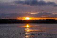 Going down (fredrik.gattan) Tags: sun sunset reflection water lake sea seascape landscape gold golden clouds sky burning glowing drama silhouette vaxholm stockholm sweden