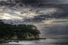 North End Narrow Neck Beach (elpedro1960) Tags: beach rocks cliffs sky trees bush sea seascape ocean hauraki gulf sunset evening calm gentle auckland new zealand narrow neck devonport