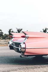 A good Cadillac like this makes pink look like the colour of heaven to me.  #cars #cars #cadillac #pink #vintage #classiccars #classiccarsdaily (partsavatar) Tags: cars cadillac pink vintage classiccars classiccarsdaily