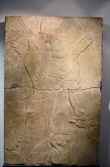 Relief from the palace of the Assyrian king Assurnasirpal II at Nimrud, 9th cent. BCE, Ny Carlsberg Glyptotek, Copenhagen (4) (Prof. Mortel) Tags: denmark copenhagen museum nycarlsbergglyptotek iraq assyria assyrian assurnasirpalii nimrud
