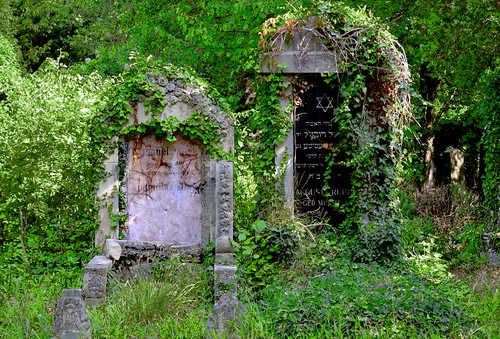 Graves in the overgrown Jewish Cemetery at the Wiener Zentralfriedhof