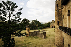 Buildings and ruins in the fortified city of Fasil Ghebbi in Gondar - Ethiopia (PascalBo) Tags: nikon d300 ethiopia ethiopie amhara gondar gonder africa afrique eastafrica afriquedelest hornofafrica cornedelafrique fasilghebbi fasilghebi wall mur architecture unesco worldheritage patrimoinemondial outdoor outdoors ruins ruines castle château pascalboegli
