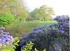 Garden days at Park of Beervelde (VISITFLANDERS) Tags: visitflanders belgium beervelde park castlepark garden gardens ghent citypark autumn spring domain flower flowers gardendays