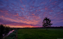 Sunrise in the backyard (koos.dewit) Tags: 2017 fuji fujifilm fujifilmxt2 fujinonxf1024mm groningen harkstede koosdewit thenetherlands backyard clouds koosdewitnl landscape sunrise
