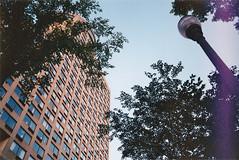 Glide (GrailK) Tags: contax139 analog film fujifilm superia 400iso colour canada québec building architecture trees ciel sky bâtiment vertigo