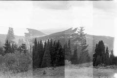 Surreal Mountain #3 (jimmietolliver) Tags: aristaedueulta400 blackandwhite doubleexposure standdeveloped canonet landscape monochrome mountain ql19 rodinal surreal trees