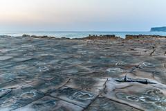 Tessellated Rock Platform Dawn Seascape (Merrillie) Tags: daybreak rockshelf sand landscape northavocabeach headland avocabeach sea dawn newsouthwales rocks centralcoast nsw earlymornings beach scenery tessellated rocky tessellatedrockplatform seascape nature outdoors waterscape rockplatform coast water australia