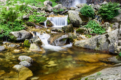 Choi Fall Stream (PB1_9832) (Param-Roving-Photog) Tags: choi waterfall stream ghnp jungle himalayas nationalpark unesco slowshutterspeed wilderness mountains himachal tirthan india travel photography offbeat