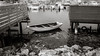 Boat (Poul_Werner) Tags: ellös orust sverige sweden dock ferie harbour hav havn ocean port sea sommerferie summerbreak summervacation vand water västragötalandslän se blackwhitephotos